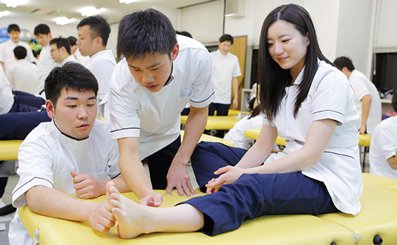 士 理学 大学 療法